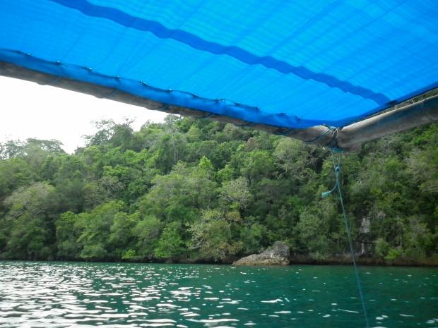 Hijaunya air laut :)